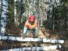 Лесохозяйственные работы