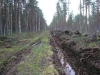 Семинар по строительству лесных дорог